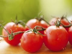 How To Store Tomatoes The Right Way To Increase Their Shelf Life