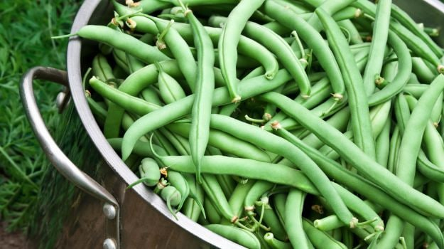 10 best beans recipes ndtv food for Cuisine meaning in marathi