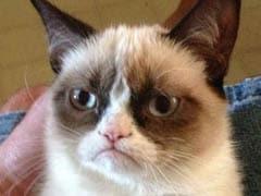 Internet Sensation Grumpy Cat to Get Wax Figure at Madame Tussauds