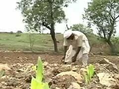 महाराष्ट्र : मराठवाड़ा को खेती के लिए नहीं मिलेगा पानी