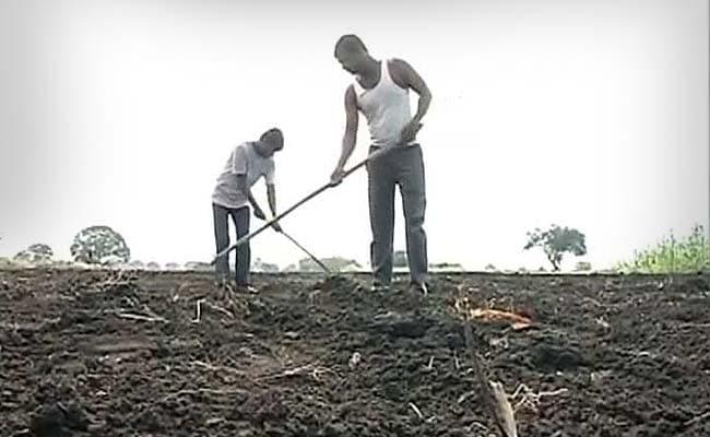 किसान ने PMO को पत्र लिखकर सरकारी रिपोर्ट को बताया गलत, कहा- जानबूझकर अधिकारियों ने की गलती