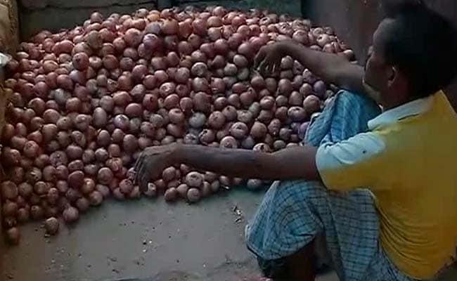 मध्य प्रदेश : प्याज की बंपर पैदावार, दाम न मिलने से भैंसों को खिलाने पर मजबूर किसान