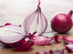 Wholesale Onion Prices Hit Lowest at Rs 9.50