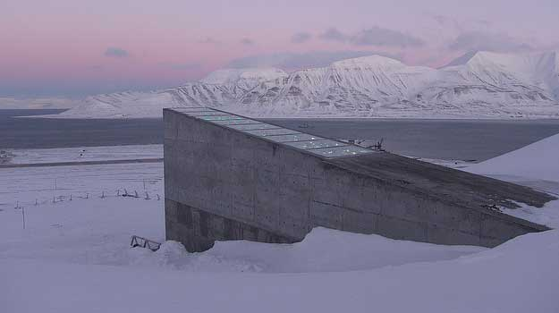 The Doomsday Seed Vault: Why the World May Never Run Out of Food