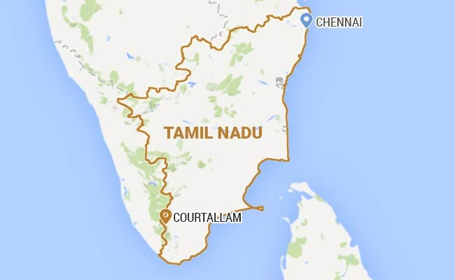 Crew of Film Unit Injured in Bee Attack in Tamil Nadu, Shooting Cancelled