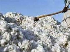 Cash Crunch Puts Brake On India's Cotton Exports; Rivals To Gain