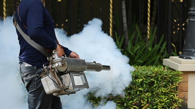 Joint & Muscular Pain Common After Dengue, Say Doctors