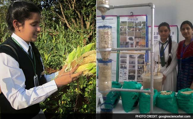 Odisha Girl, 13, Wins Big Award at Google Science Fair