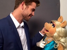 This Man is Miss Piggy's New Boyfriend on <i>The Muppets</i>