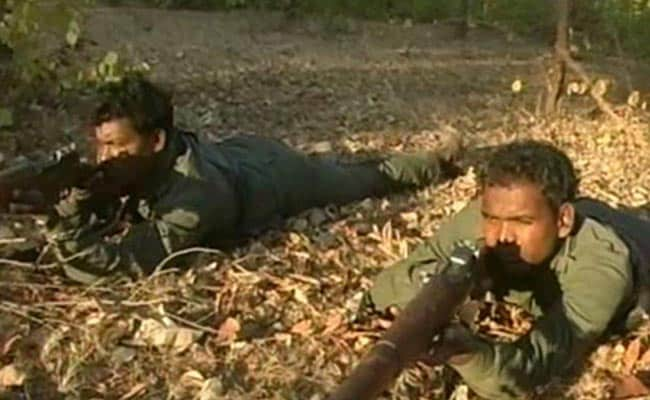 502 Naxals Have Surrendered in 10 Years; Rehabilitated: Maharashtra Government
