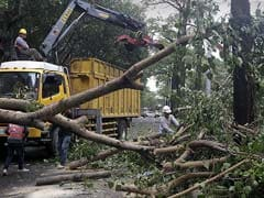 2 Killed, Hundreds Injured Due to Super Typhoon in Taiwan