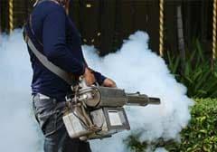दिल्ली में मच्छरों से निपटने के लिए सड़क पर उतरी केजरीवाल सरकार