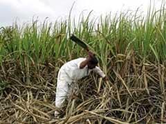Paradeep Phosphates Gets Sebi Nod For IPO