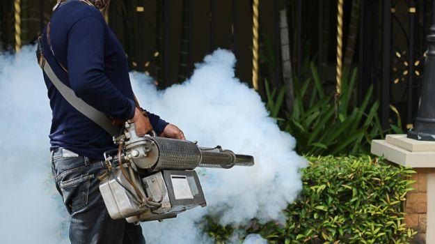 Fogging to Control Dengue May Harm Human Health: CSE - NDTV Food
