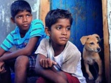 Filmmakers Should Learn Art of Pitching, Says <I>Kaakka Muttai</I> Director
