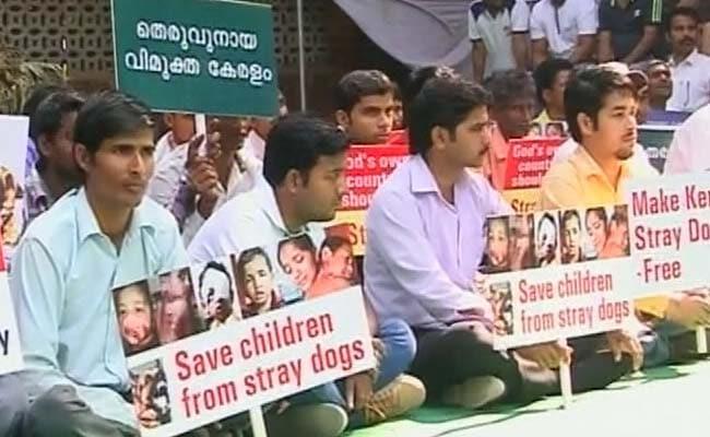 Kerala's Leading Businessman Goes on Hunger Strike Against Street Dogs