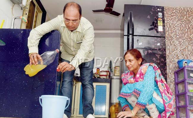 Use Cow Urine to Clean Hospitals, Urges Mumbai Corporator