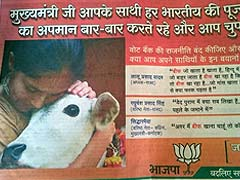 Holy Cow! BJP Ad Rubs It In Before Final Voting in Bihar