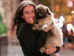 The Incredible Story of Bonzo, the 'Miracle Dog' Who Had a Great Fall