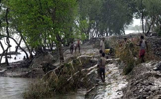 Meet Every Month For Identification Of Wetlands: Green Panel To Government