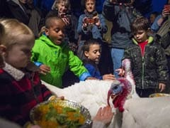 At This Holiday Feast, Turkeys Make an Entrance, Not an Entree