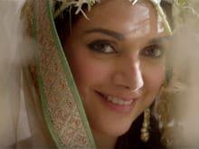 Vidhu Vinod Chopra Took 'Just One Second' to Cast Aditi in <I>Wazir</i>