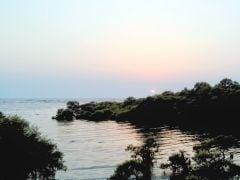 मुंबई : लहरों के साथ सेल्फी लेने के चक्कर में समुद्र में डूबी लड़की...