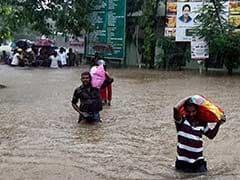 Chembarambakkam Lake: Latest News, Photos, Videos on