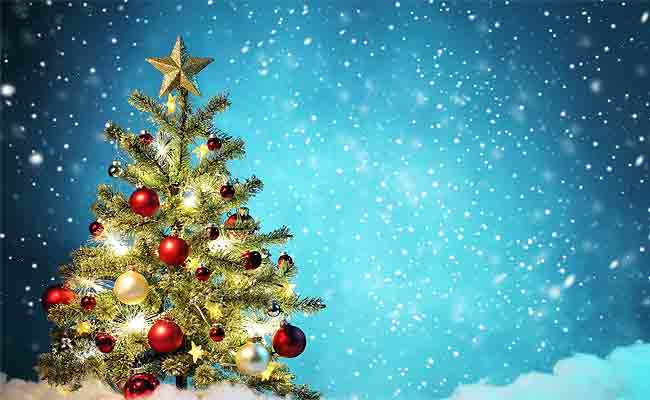 Christmas 2020: Why Is Christmas Celebrated On The 25th December, History, Facts And Traditional Cake Recipe