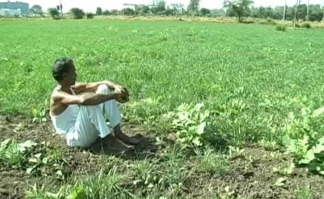 Jharkhand Farmer Kills 3-Year Old Daughter For 'Being A Girl'