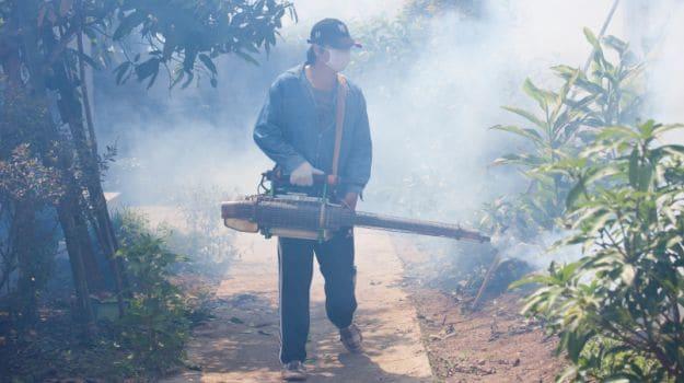 Dengue Fever Spreads Around the World