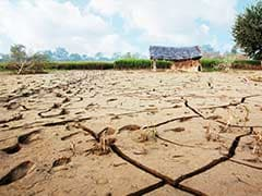 UP Government Promises Steps To Provide Drought Relief