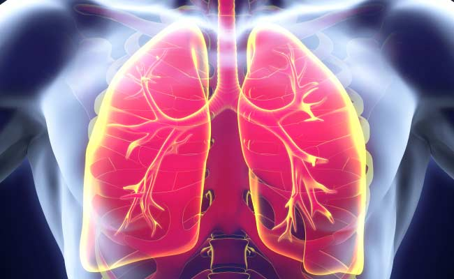 Protein Key To Combating Lung Cancer Identified