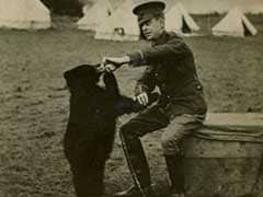 New Book Chronicles Real Bear Behind 'Winnie-The-Pooh'