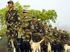 Army Dogs Keep Danger And Stress At Bay For Soldiers In J&K