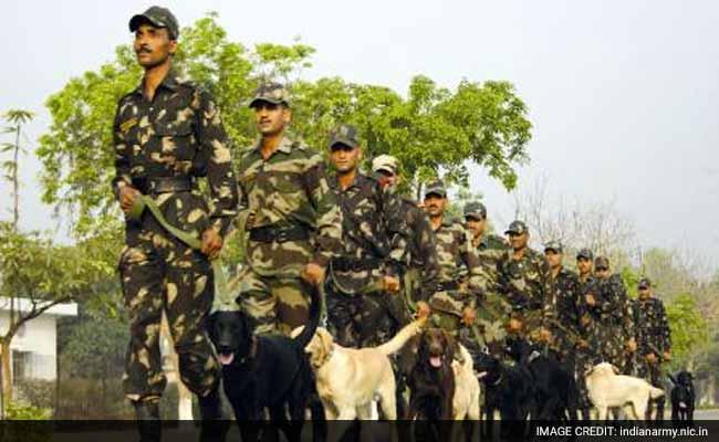 आईबी ने सैन्य ठिकानों की सुरक्षा के लिए कुत्तों को तैनात करने का सुझाव दिया