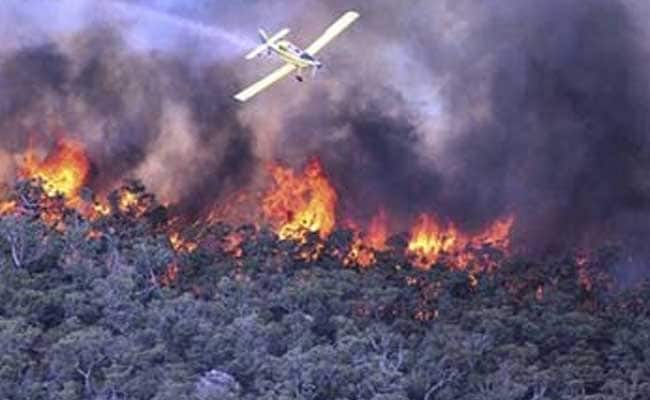 Australian Wildfires Raze 95 Homes In Single Township