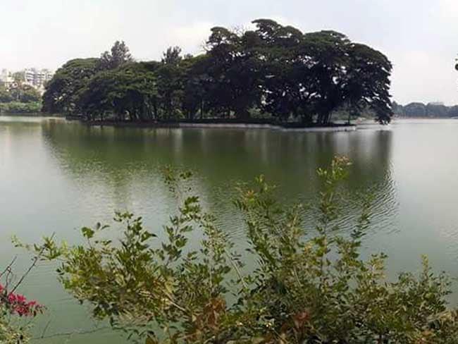 बेंगलुरु की झीलों पर निजी कंपनियों के साथ सरकार ने भी कर लिया अतिक्रमण