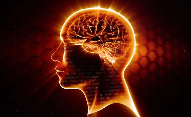 7bddd1dc5 Our Brain Is 'Pre-Adapted' To Face Any Situation: Study