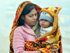 Intense Cold, Fog In North India; Kargil Shivers At -16.6 Degrees Celsius