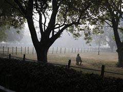 Cold Wave Sweeps North, Delhi Gauges Lowest For January In 3 Years