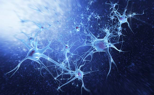 What Kills Neurons After Stroke?