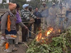 Cold Conditions Prevail In Punjab, Haryana