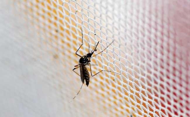 Warmer Climate Threatens Malaria Spread In Ethiopia: Study
