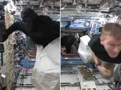There's an Ape in Space and Astronauts in Orbit Are Going Bananas