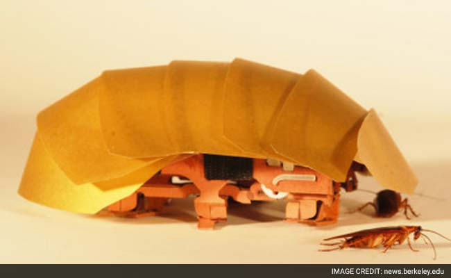 Cockroach-Inspired Robots Can Squeeze Through Cracks