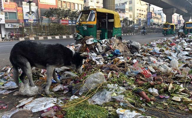 'Who's In Charge Of Garbage - Centre Or Delhi Government,' Asks Top Court