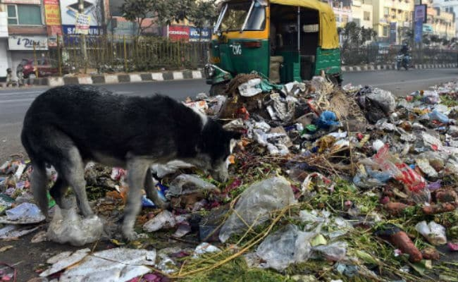 After Top Court's Garbage Rebuke, Lt Governor's Office Says Work Underway