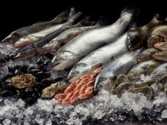 There are Plenty of Fish in the Sea, So Start Eating Them