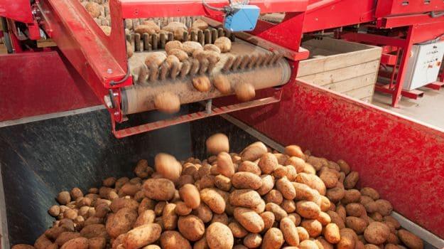 Govt Proposes 100 Per Cent FDI in Food Processing
